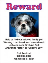 lost-dog-flyer